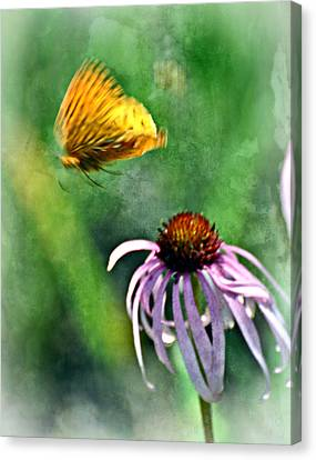 Butterfly In Flight Canvas Print by Marty Koch