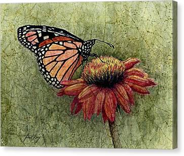 Butterfly In My Garden Canvas Print by Janet King