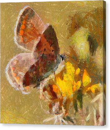 Butterfly Life Canvas Print by Yury Malkov
