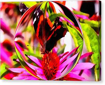 Butterfly Orb Canvas Print by Dan Sproul