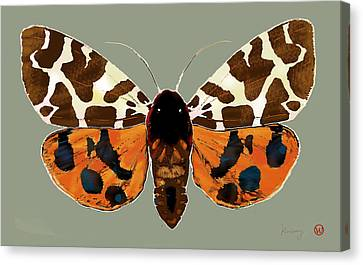 Butterfly -  Pop Stylised Etching Art Poster  Canvas Print by Kim Wang