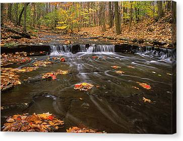 Buttermilk Falls Canvas Print by Dale Kincaid