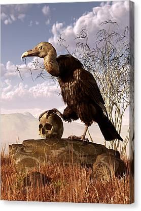 Buzzard With A Skull Canvas Print by Daniel Eskridge