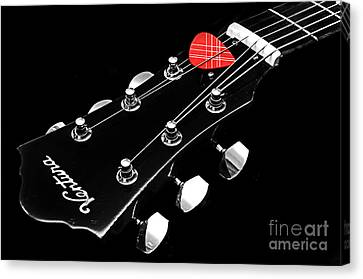 Bw Head Stock With Red Pick  Canvas Print by Andee Design