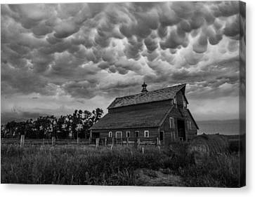 Bwcday3 Take Shelter  Canvas Print by Aaron J Groen