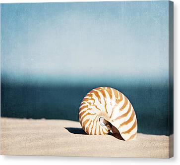 By The Blue Canvas Print by Carolyn Cochrane
