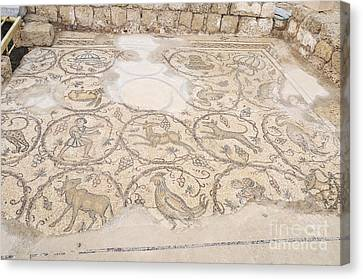 Byzantine Mosaic Depicting Animals And Hunting Scenes. Canvas Print by Shay Levy