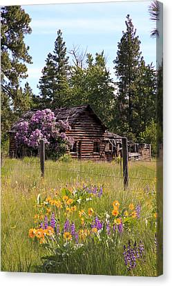 Cabin And Wildflowers Canvas Print by Athena Mckinzie