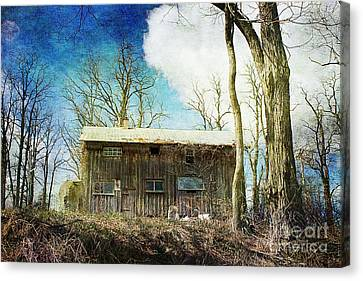 Cabin Fever Canvas Print by A New Focus Photography