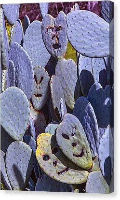 Cactus Faces Canvas Print by Garry Gay