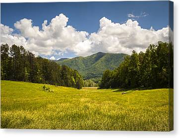 Cades Cove Great Smoky Mountains National Park - Gold And Blue Canvas Print by Dave Allen