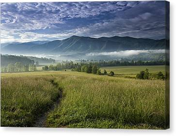 Cades Cove Meadow Canvas Print by Andrew Soundarajan