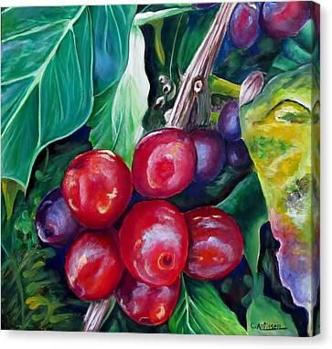 Cafe Costa Rica Canvas Print by Carol Allen Anfinsen