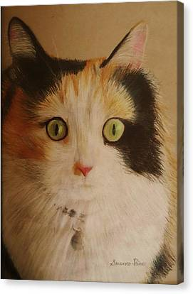 Calico Cat Canvas Print by Savanna Paine
