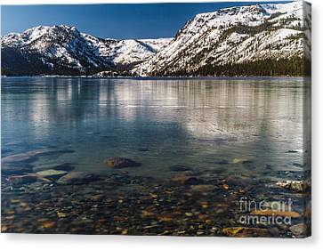 Calico Ice Canvas Print by Mitch Shindelbower