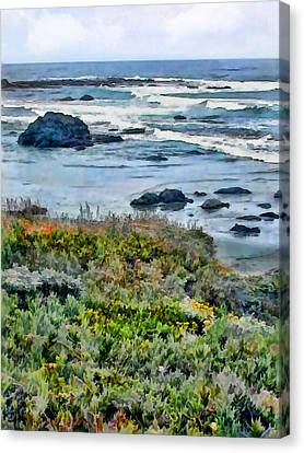 California Central Coast Near San Simeon Canvas Print by Elaine Plesser
