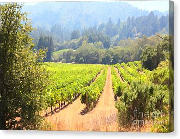 California Vineyard Wine Country 5d24515 Canvas Print by Wingsdomain Art and Photography