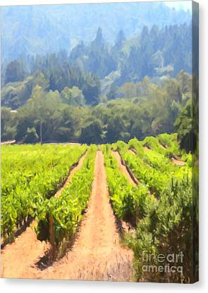 California Vineyard Wine Country 5d24518 Vertical Canvas Print by Wingsdomain Art and Photography