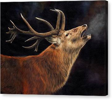 Call Of The Wild Canvas Print by David Stribbling