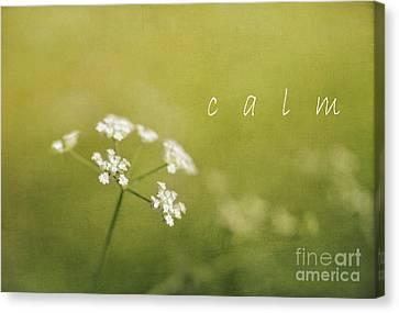 Calm Canvas Print by Elena Nosyreva