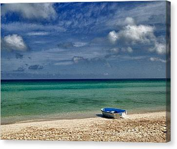 Calm Sea Canvas Print by Christopher Williams