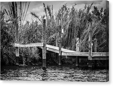 Caloosahatchee River Dock - Bw Canvas Print by Carolyn Marshall