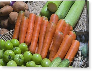 Cambodian Carrots Canvas Print by Craig Lovell