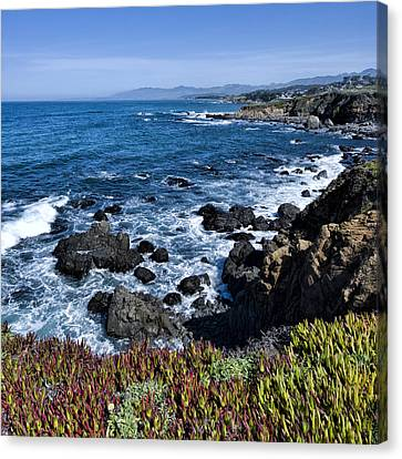 Cambria Ca Canvas Print by Mike Herdering