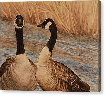 Canadian Geese Canvas Print by Michelle Miron-Rebbe