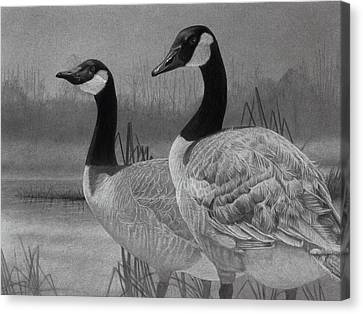 Canadian Geese Canvas Print by Tim Dangaran