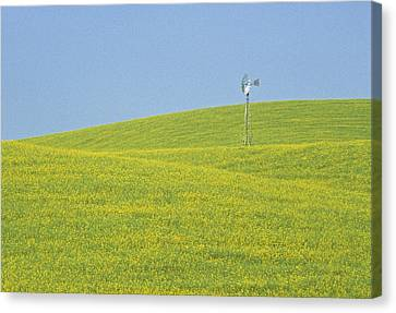 Canola Windmill Canvas Print by Latah Trail Foundation