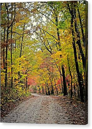 Canopy Of Yellow Canvas Print by Marty Koch