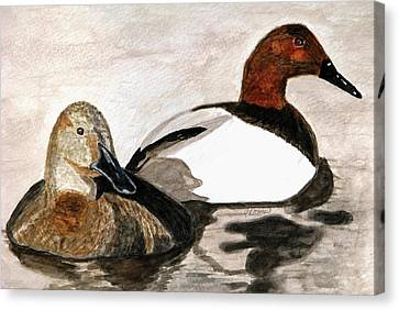 Canvasback Couple Canvas Print by Angela Davies