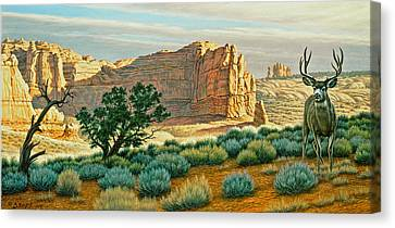 Canyon Country Buck Canvas Print by Paul Krapf