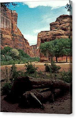 Canyon De Chelly National Monument 1993 Canvas Print by Connie Fox