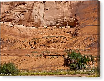 Canyon Dechelly Whitehouse Ruins Canvas Print by Bob and Nadine Johnston