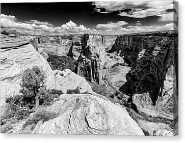 Canyon Del Muerto Canyon De Chelly Navajo Nation Chinle Arizona Canvas Print by Silvio Ligutti
