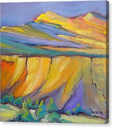 Canyon Dreams 33 Canvas Print by Pam Van Londen