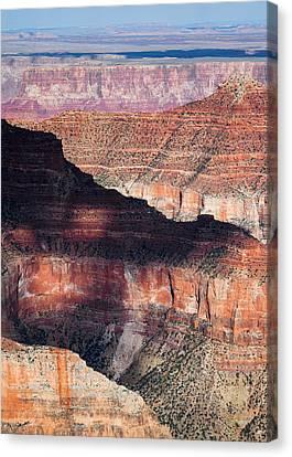 Canyon Layers Canvas Print by Dave Bowman