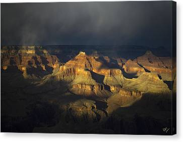 Canyon Light Canvas Print by Peter Coskun