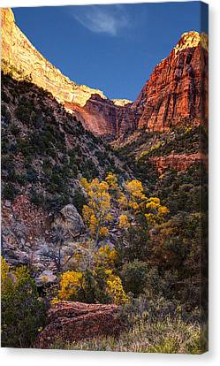 Canyons Of Zion At Autumn Canvas Print by Andrew Soundarajan