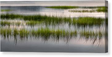 Cape Cod Marsh Canvas Print by Bill Wakeley