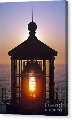 Cape Meares Lighthouse Canvas Print by Douglas Taylor