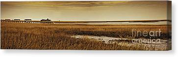 Cape Romaine Canvas Print by Bruce Bain