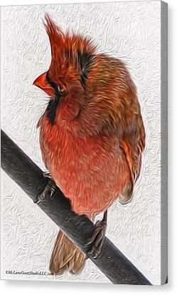 Cardinal In The Wind Canvas Print by LeeAnn McLaneGoetz McLaneGoetzStudioLLCcom