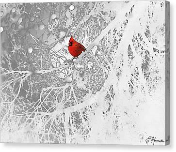 Cardinal In Winter Canvas Print by Ellen Henneke