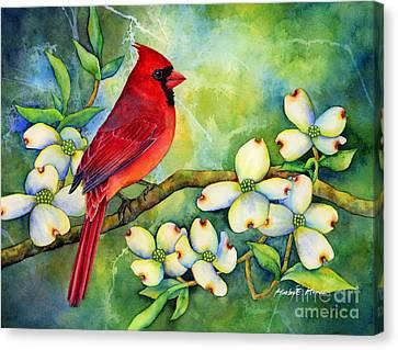 Cardinal On Dogwood Canvas Print by Hailey E Herrera