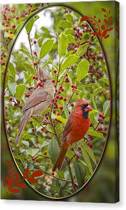 Cardinals In Holly Canvas Print by Bonnie Barry