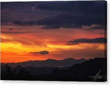 Carefree Skies Canvas Print by Anthony Citro
