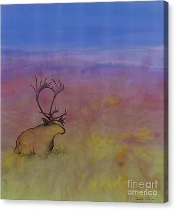 Caribou On The Tundra Canvas Print by Carolyn Doe